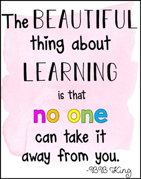 """The beautiful thing about learning is that no one can take it away from you"""