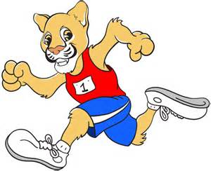 a cougar dressed in sportswear running