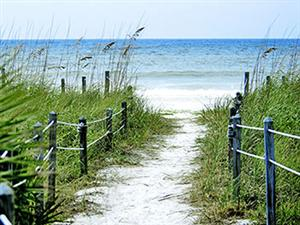 Sandy fenced pathway sourrounded by grass that leads to the beach